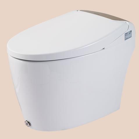 惠达卫浴智能坐便器HDE5003T
