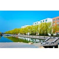 河南科技大学绿化