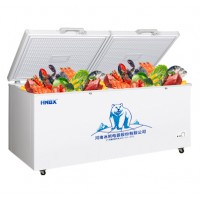 冰熊755L小冷柜家用商用大容量冷冻柜迷你冷柜小型保鲜冷藏两用